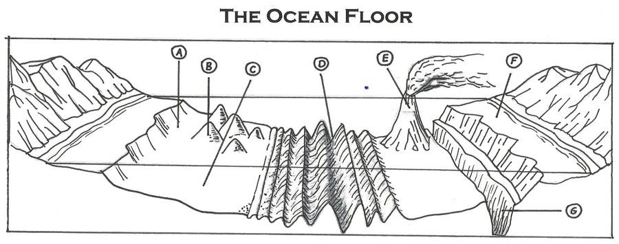 ocean floor diagram worksheet thefloors co. Black Bedroom Furniture Sets. Home Design Ideas