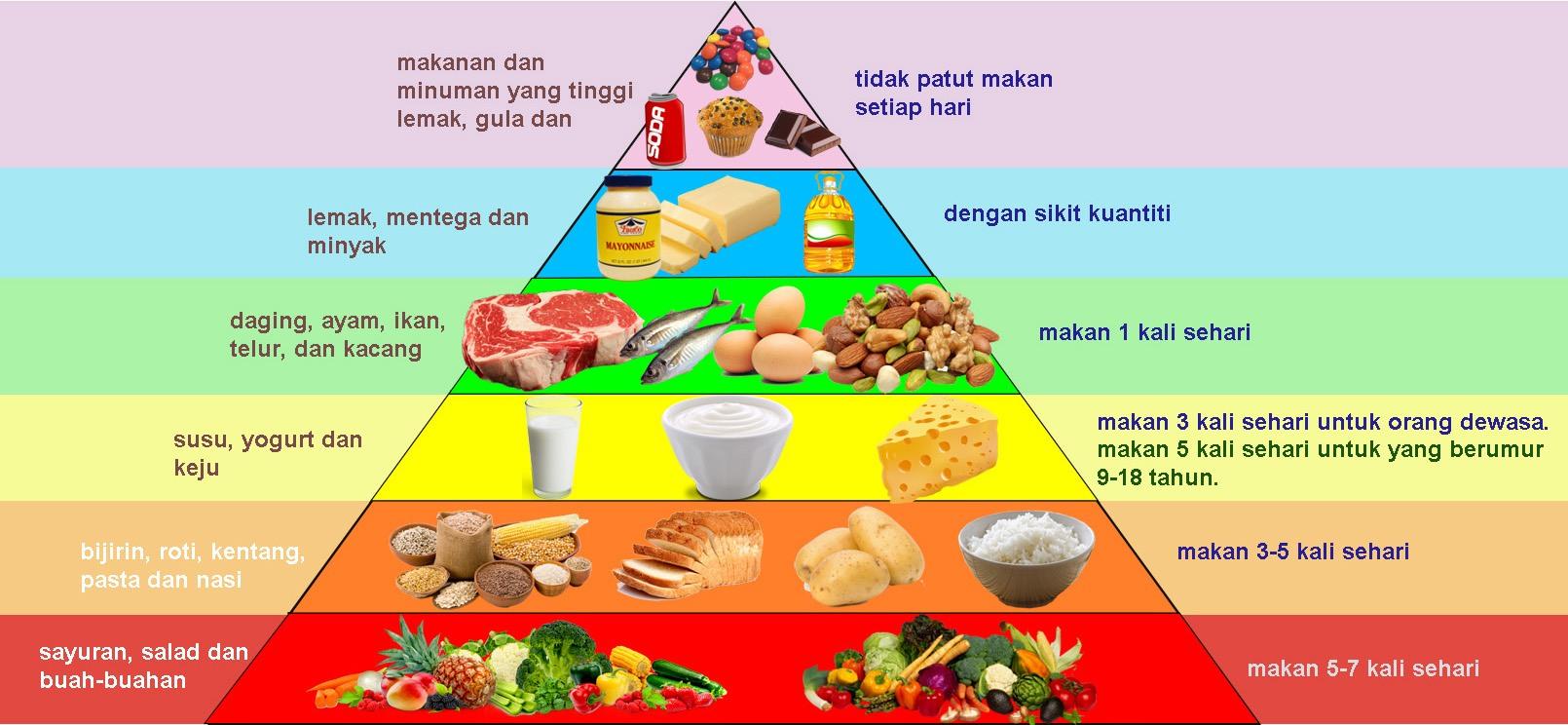 Sains Tahun 3 Kelas Makanan Dan Makanan Seimbang Quiz Quizizz
