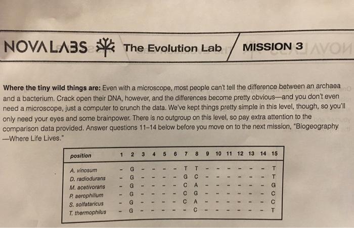 Nova Lab Mission 3 Study Guide.   Science Quiz - Quizizz