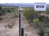 Rabbit Proof Fence Other Quiz Quizizz