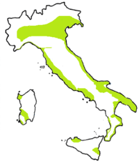 Cartina Italia Pianure.Le Pianure Italiane Geography Quiz Quizizz