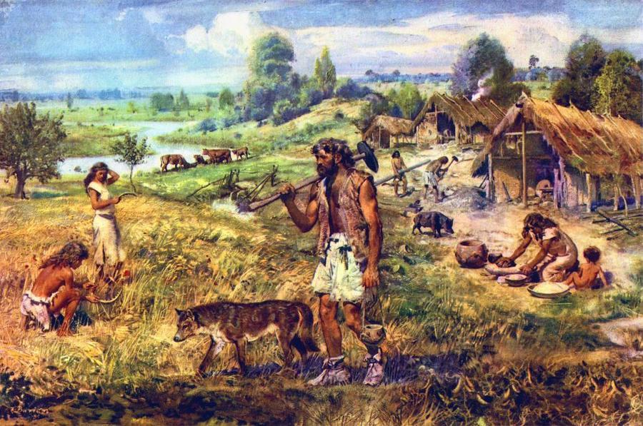 The Neolithic Revolution | World History Quiz - Quizizz