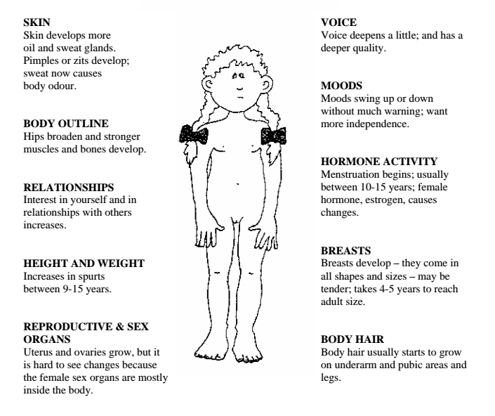 Changes puberty physical during Understanding Puberty