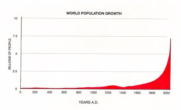 Population Growth | Ecology Quiz - Quizizz