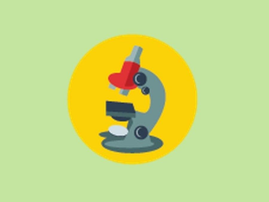 Microscope Parts Quiz Answer Key - Micropedia
